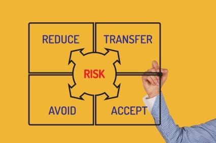 Managing Business Assets W/ Portfolio Management Risk Practices